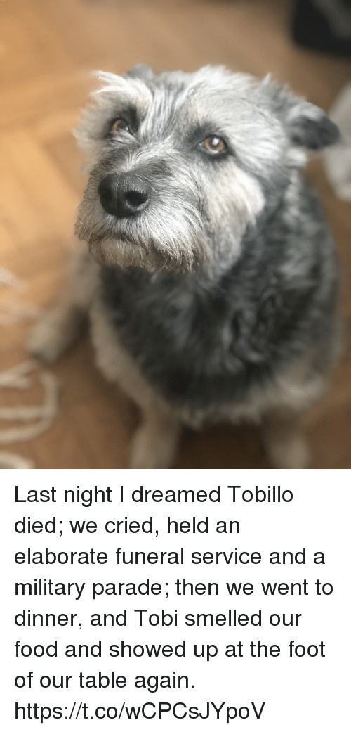 Food, Memes, and Military: Last night I dreamed Tobillo died; we cried,  held an elaborate funeral service and a military parade; then we went to dinner,  and Tobi smelled our food and showed up at the foot of our table again. https://t.co/wCPCsJYpoV