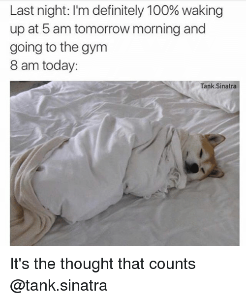 5 Am, Anaconda, and Definitely: Last night: l'm definitely 100% waking  up at 5 am tomorrow morning and  going to the gym  8 am today:  Tank Sinatra It's the thought that counts @tank.sinatra