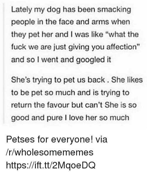 """Love, Fuck, and Good: Lately my dog has been smacking  people in the face and arms when  they pet her and I was like """"what the  fuck we are just giving you affection""""  and so I went and googled it  She's trying to pet us back. She likes  to be pet so much and is trying to  return the favour but can't She is so  good and pure I love her so much Petses for everyone! via /r/wholesomememes https://ift.tt/2MqoeDQ"""
