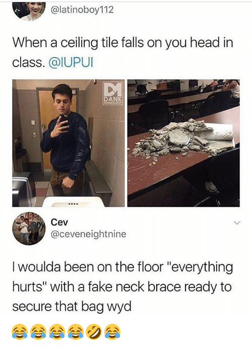 """Dank, Fake, and Head: @latinoboy112  When a ceiling tile falls on you head in  class. @IUPUI  DANK  Cev  @ceveneightnine  I woulda been on the floor """"everything  hurts"""" with a fake neck brace ready to  secure that bag wyd 😂😂😂😂🤣😂"""