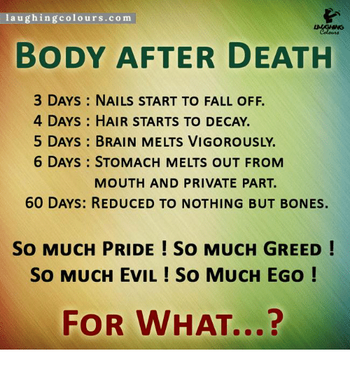 Greedy Family Members After Death Quotes: Laughing Coloursco M BODY AFTER DEATH 3 DAYS NAILS START