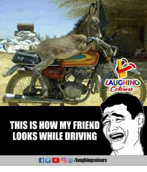 Driving, Indianpeoplefacebook, and How: LAUGHING  Colours  THIS IS HOW MY FRIEND  LOOKS WHILE DRIVING  f /laughingcolours
