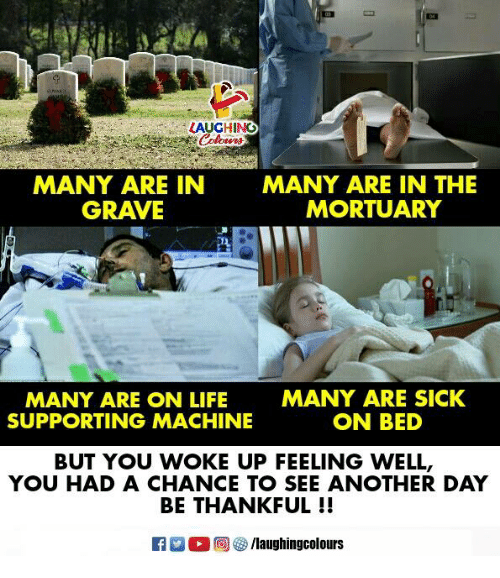 Life, Sick, and Indianpeoplefacebook: LAUGHING  MANY ARE IN  GRAVE  MANY ARE IN THE  MORTUARY  MANY ARE ON LIFE  SUPPORTING MACHINE  MANY ARE SICK  ON BED  BUT YOU WOKE UP FEELING WELL,  YOU HAD A CHANCE TO SEE ANOTHER DAY  BE THANKFUL !!