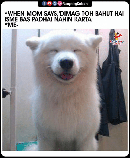 Indianpeoplefacebook, Mom, and Bas: /LaughingColours  *WHEN MOM SAYS,'DIMAG TOH BAHUT HAI  ISME BAS PADHAI NAHIN KARTA'  *ME-  LAUGHING