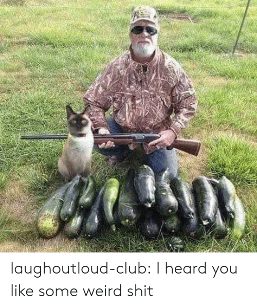 Club, Shit, and Tumblr: laughoutloud-club:  I heard you like some weird shit