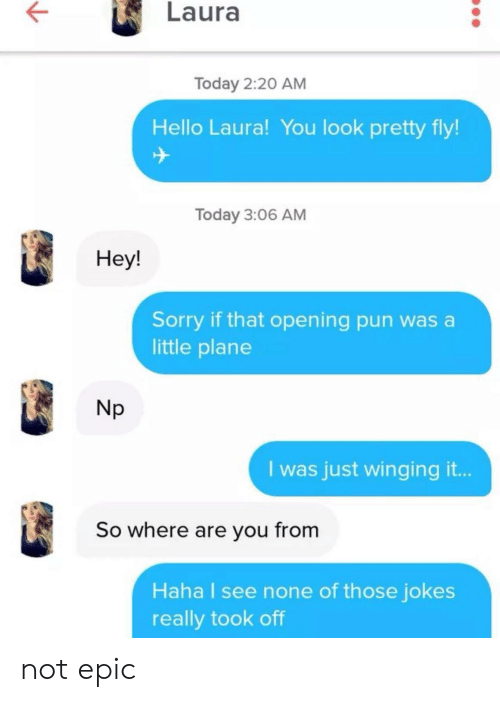 Hello, Sorry, and Jokes: Laura  Today 2:20 AM  Hello Laura! You look pretty fly!  ナ  Today 3:06 AM  Hey!  Sorry if that opening pun was a  little plane  Np  I was just winging it...  So where are you from  Haha I see none of those jokes  really took off not epic
