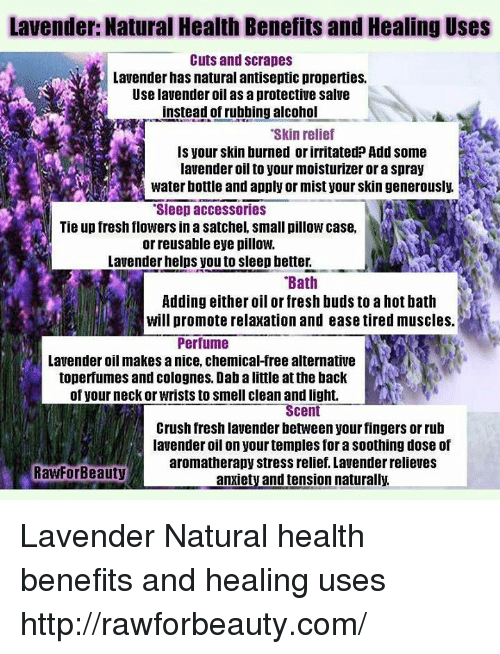 Lavender Natural Health Benefits And Healing Uses Cuts And Scrapes