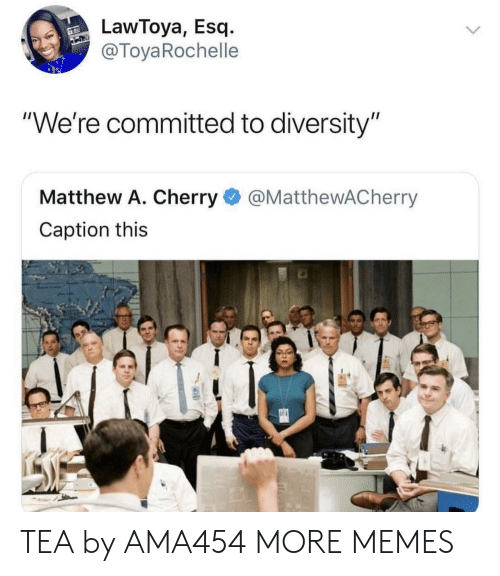 "Dank, Memes, and Target: LawToya, Esq.-  @ToyaRochelle  ""We're committed to diversity""  Matthew A. Cherry@MatthewACherry  Caption this TEA by AMA454 MORE MEMES"
