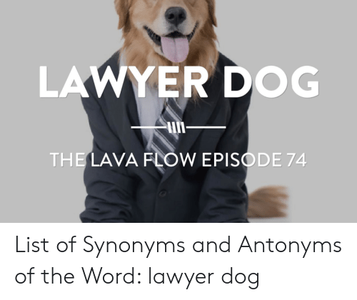 LAWYER DOG THE LAVA FLOW EPISODE 74 List of Synonyms and