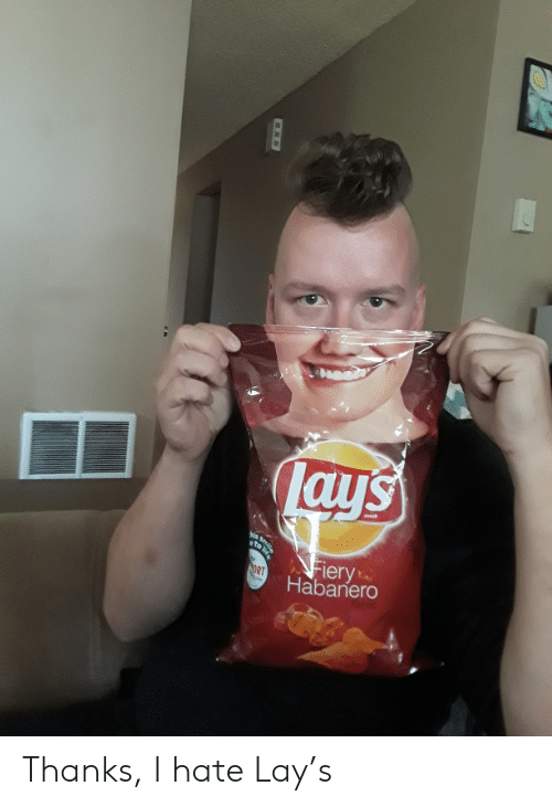 Lays Iery Habanero Smile to NORT Thanks I Hate Lay's | Lay's Meme on