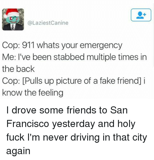 Driving, Fake, and Friends: @LaziestCanine  Cop: 911 whats your emergency  Me: I've been stabbed multiple times in  the back  Cop: [Pulls up picture of a fake friend] i  know the feeling I drove some friends to San Francisco yesterday and holy fuck I'm never driving in that city again
