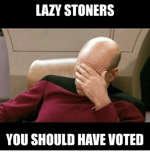 LAZY STONERS YOU SHOULD HAVE VOTED | Lazy Meme on ME ME