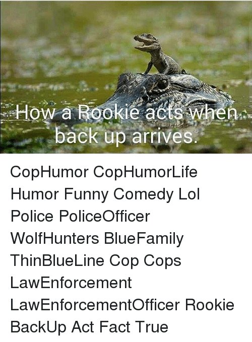 Funny, Lol, and Memes: le a  back up arrives. CopHumor CopHumorLife Humor Funny Comedy Lol Police PoliceOfficer WolfHunters BlueFamily ThinBlueLine Cop Cops LawEnforcement LawEnforcementOfficer Rookie BackUp Act Fact True