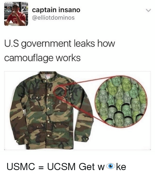 Memes, Domino's, and Government: LE Captain insano  K @elliot dominos  US government leaks how  camouflage works USMC = UCSM Get w👁ke