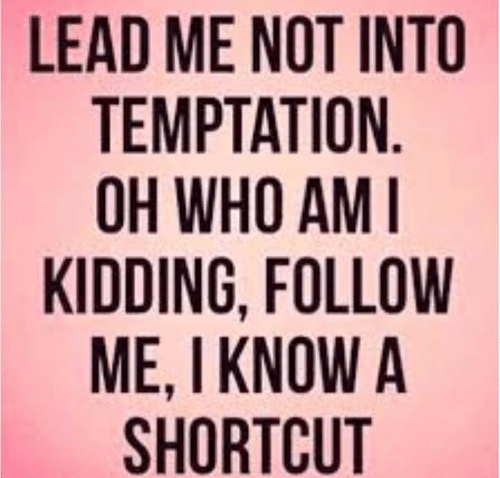 Memes, Who Am I, and Temptation: LEAD ME NOT INTO  TEMPTATION  OH WHO AM I  KIDDING, FOLLOW  ME, I KNOW A  SHORTCUT