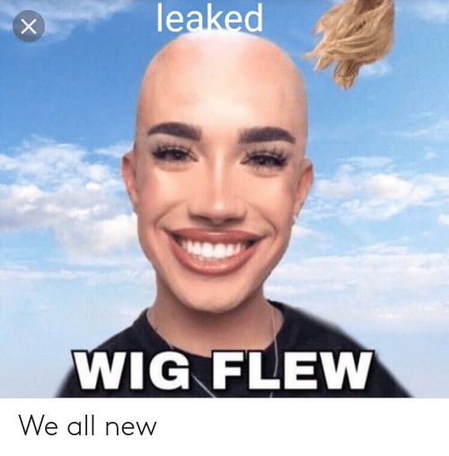 Dank Memes, All, and New: leaked  WIG FLEW We all new