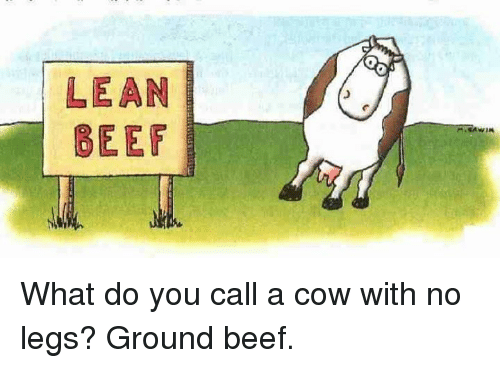 how to call a cow