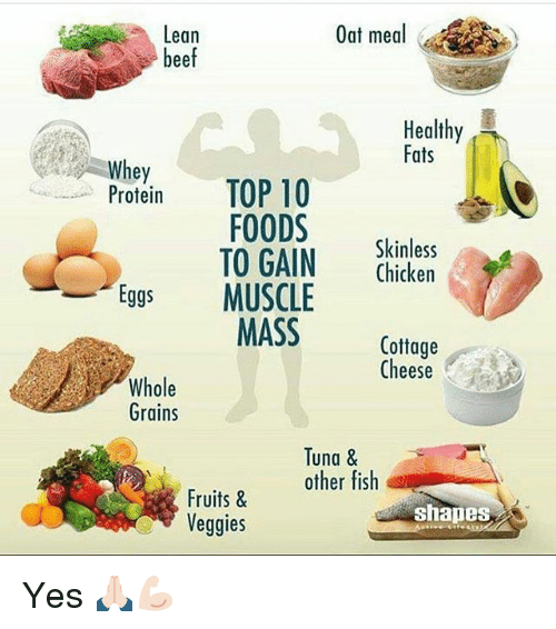Lean oat meal beef healthy fats whey top 10 protein foods skinless to gain chicken eggs muscle for Does fish have protein