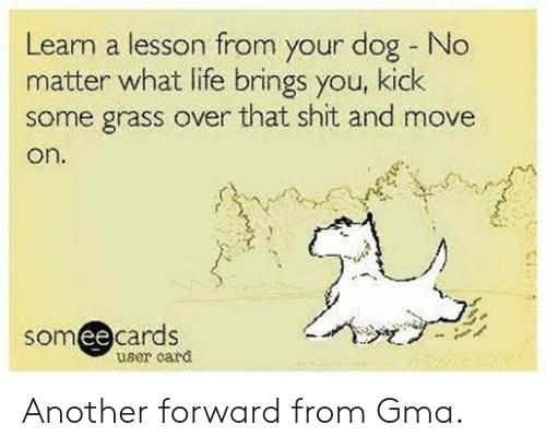 Learn lesson from dog no matter life brings u kick grass over sh!t move on sign