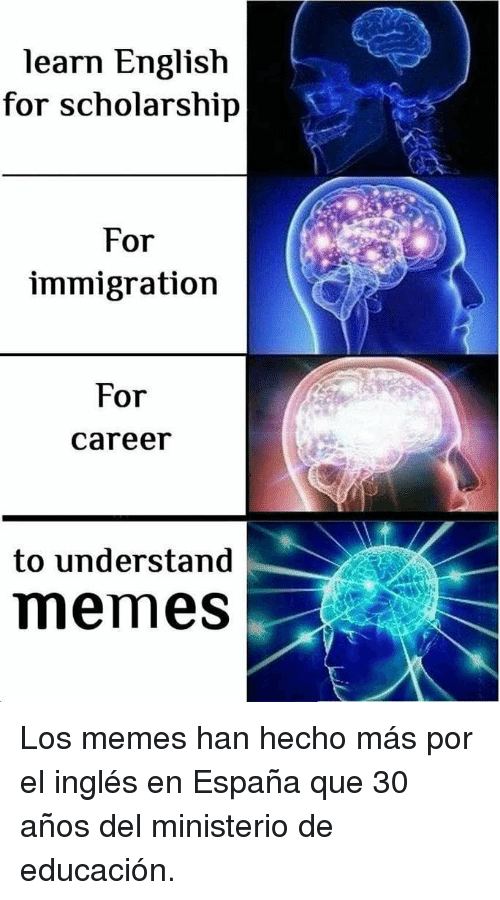 Memes, Immigration, and English: learn English  for scholarship  For  immigration  For  career  to understand  memes Los memes han hecho más por el inglés en España que 30 años del ministerio de educación.