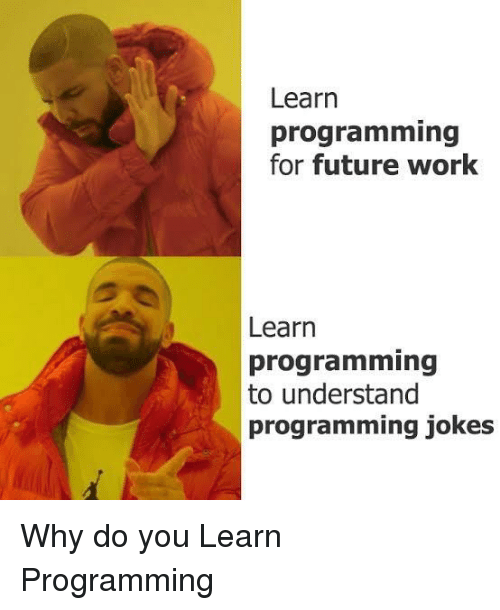 Learn Programming for Future Work Learn Programming to Understand