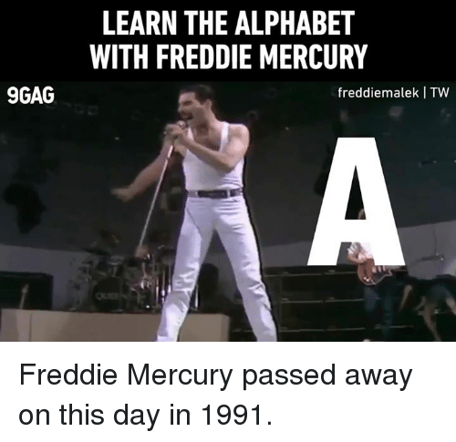 9gag, Dank, and Alphabet: LEARN THE ALPHABET  WITH FREDDIE MERCURY  9GAG  freddiemalek I TW Freddie Mercury passed away on this day in 1991.