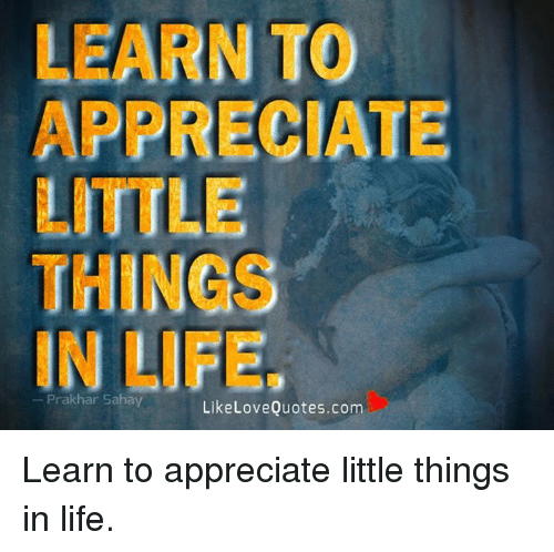 Learn To Appreciate Things In Life Prakhar Sahay Like Love Quotescom