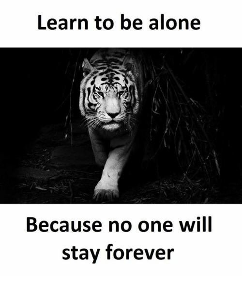 learn to be alone because no one will stay forever being alone