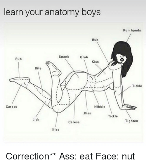 Ass, Memes, and Run: learn your anatomy boys  Rub  Spank  Grab  Rub  Kiss  Bite  Nibble  Caress  Kiss  Tickle  Lick  Caress  Kiss  Run hands  Tickle  Tighten Correction** Ass: eat Face: nut
