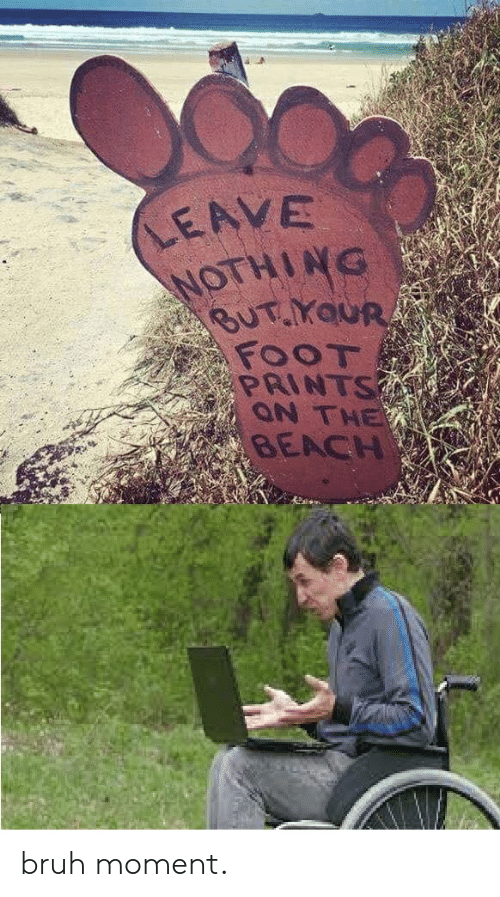 Bruh, Reddit, and Beach: LEAVE  NOTHING  BUT.YaUR  FOOT  PRINTS  ON THE  BEACH bruh moment.