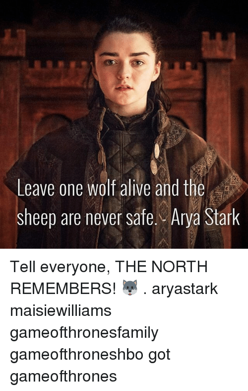 Alive, Memes, and Wolf: Leave one wolf alive and the  sheep are never safe. Arya Stark Tell everyone, THE NORTH REMEMBERS! 🐺 . aryastark maisiewilliams gameofthronesfamily gameofthroneshbo got gameofthrones
