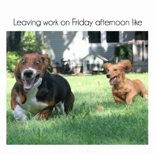 Friday, Funny, and Work: Leaving work on Friday afternoon like