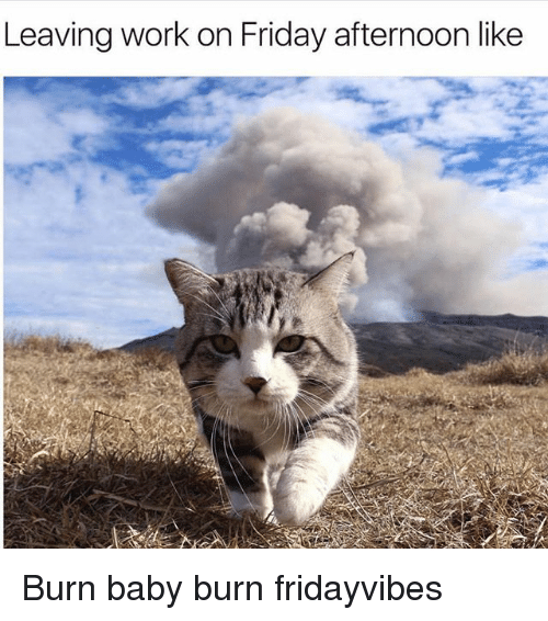Friday, Memes, and Work: Leaving work on Friday afternoon like Burn baby burn fridayvibes