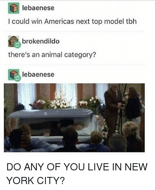 25 best memes about top model top model memes for Where do models live in new york