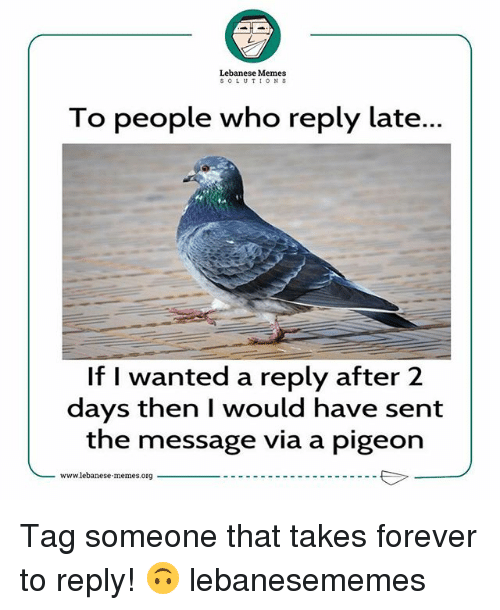 Memes, Forever, and Tag Someone: Lebanese Memes  SOLUTIONS  To people who reply late...  If I wanted a reply after 2  days then I would have sent  the message via a pigeon  -www1ebanese.memes.org Tag someone that takes forever to reply! 🙃 lebanesememes