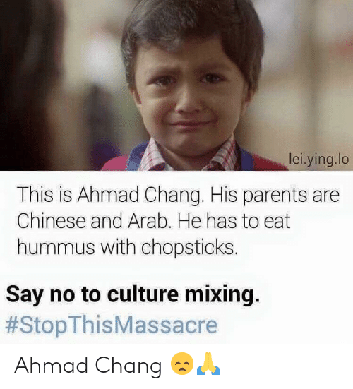 Parents, Chinese, and Hummus: lei.ying.lo  This is Ahmad Chang. His parents are  Chinese and Arab. He has to eat  hummus with chopsticks  Say no to culture mixing.  Ahmad Chang 😞🙏
