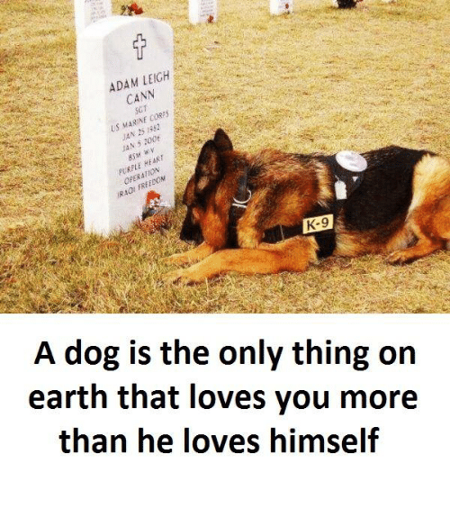 Earth, Heart, and Dog: LEIGH  ADAM CANN  Us MARIN  cosies  N 25  HEART  K-9  A dog is the only thing on  earth that loves you more  than he loves himself
