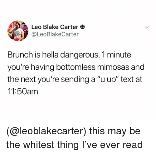 "Text, Dank Memes, and Next: Leo Blake Carter  @LeoBlakeCarter  Brunch is hella dangerous. 1 minute  you're having bottomless mimosas and  the next you're sending a ""u up"" text at  11:50am (@leoblakecarter) this may be the whitest thing I've ever read"