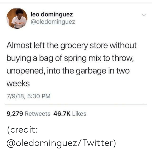 Dank, Twitter, and Spring: leo dominguez  @oledominguez  Almost left the grocery store without  buying a bag of spring mix to throw,  unopened, into the garbage in two  weeks  7/9/18, 5:30 PM  9,279 Retweets 46.7K Likes (credit: @oledominguez/Twitter)