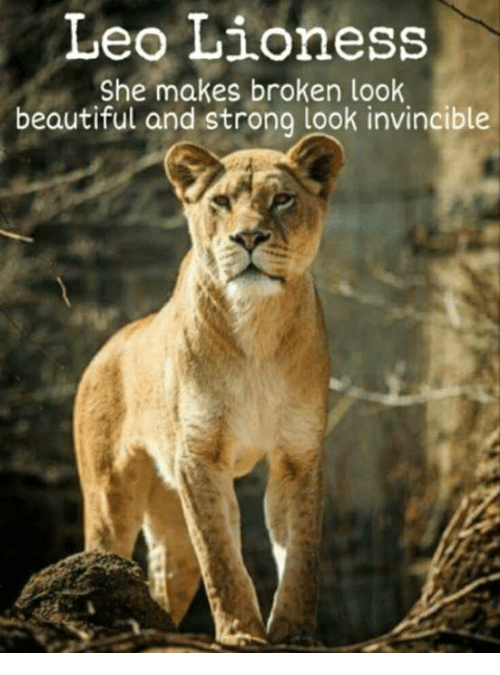 Leo Lioness She Makes Broken Look Beautiful And Strong Look