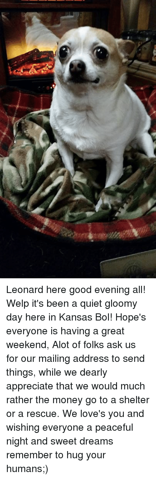 leonard here good evening all welp its been a quiet 8180675 ✅ 25 best memes about gloomy gloomy memes