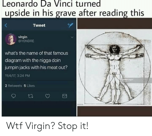 Leonardo Da Vinci, Reddit, and Virgin: Leonardo Da Vinci turned  upside in his grave after reading this  Tweet  virgin  ΟνONDRE  what's the name of that famous  diagram with the nigga doin  jumpin jacks with his meat out?  11/4/17, 3:24 PM  2 Retweets 5 Likes Wtf Virgin? Stop it!