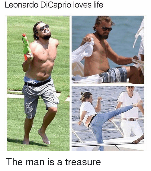 Funny, Meme, and Dicaprio: Leonardo DiCaprio loves life The man is a treasure
