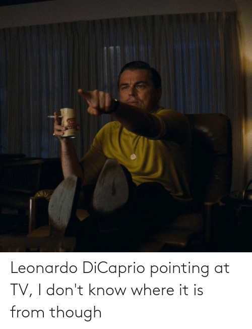 Leonardo DiCaprio, Dicaprio, and Leonardo: Leonardo DiCaprio pointing at TV, I don't know where it is from though