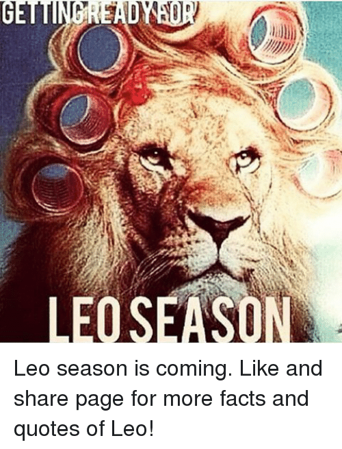 LEOSEASON Leo Season Is Coming Like And Share Page For More Facts Delectable Pictures Of Lion With Diss Quotes