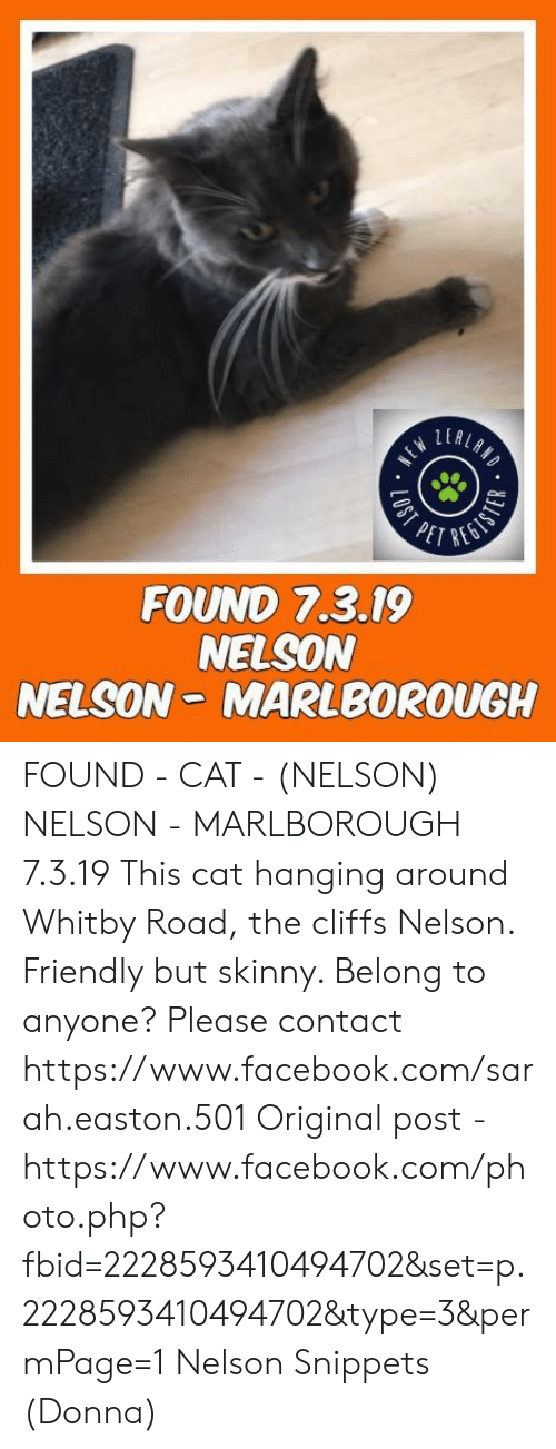 Facebook, Memes, and Skinny: LER  PET REO  FOUND 7.3.19  NELSON  NELSON- MARLBOROUGH FOUND - CAT - (NELSON) NELSON - MARLBOROUGH  7.3.19 This cat hanging around Whitby Road, the cliffs Nelson.  Friendly but skinny.  Belong to anyone?  Please contact https://www.facebook.com/sarah.easton.501  Original post - https://www.facebook.com/photo.php?fbid=2228593410494702&set=p.2228593410494702&type=3&permPage=1 Nelson Snippets (Donna)