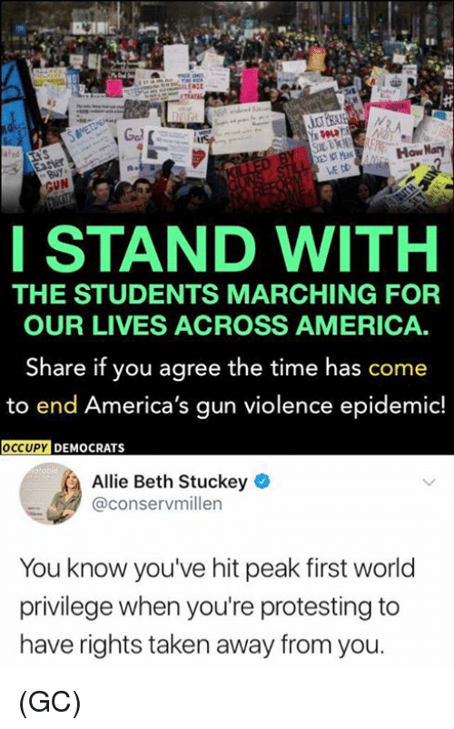 America, Memes, and Taken: LERCE  How Nary  HOAM  ME DD  GUN  ISTAND WITH  THE STUDENTS MARCHING FOR  OUR LIVES ACROSS AMERICA.  Share if you agree the time has come  to end America's gun violence epidemic!  ECU  OCCUPY  DEMOCRATS  Allie Beth Stuckey  @conservmillen  You know you've hit peak first world  privilege when you're protesting to  have rights taken away from you (GC)