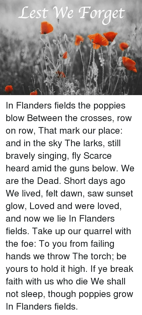 Guns, Memes, and Saw: Lest We Forget In Flanders fields the poppies blow Between the crosses, row on row, That mark our place: and in the sky The larks, still bravely singing, fly Scarce heard amid the guns below. We are the Dead. Short days ago We lived, felt dawn, saw sunset glow, Loved and were loved, and now we lie In Flanders fields. Take up our quarrel with the foe: To you from failing hands we throw The torch; be yours to hold it high. If ye break faith with us who die We shall not sleep, though poppies grow In Flanders fields.