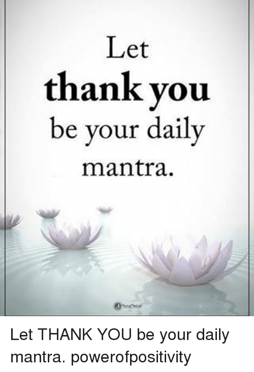Memes, 🤖, and Mantra: Let  thank you  be your daily  mantra. Let THANK YOU be your daily mantra. powerofpositivity