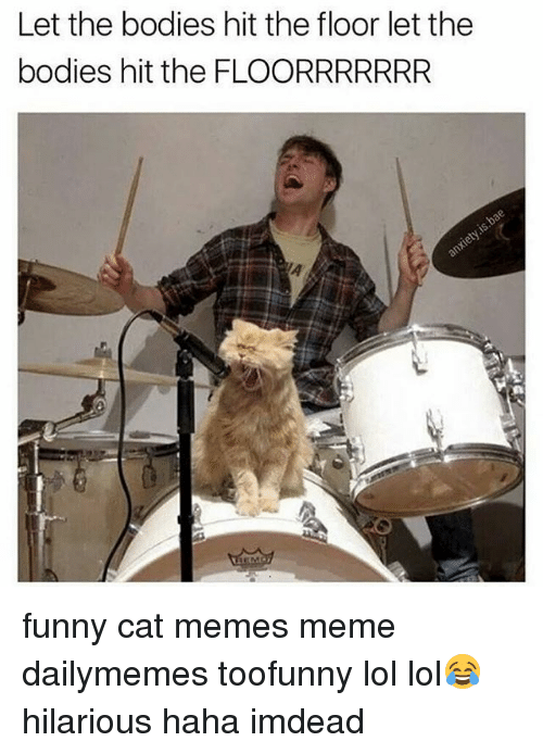 let the bodies hit the floor let the bodies hit 8493081 ✅ 25 best memes about funny cat memes funny cat memes